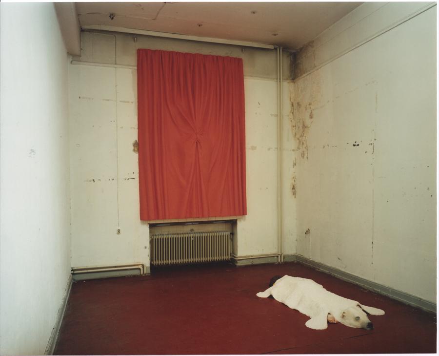 Das Fenster bleibt zu. 1999