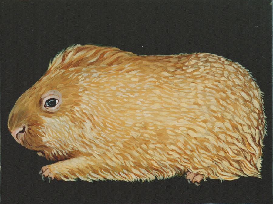 Meerschweinchenvariationen, 1999