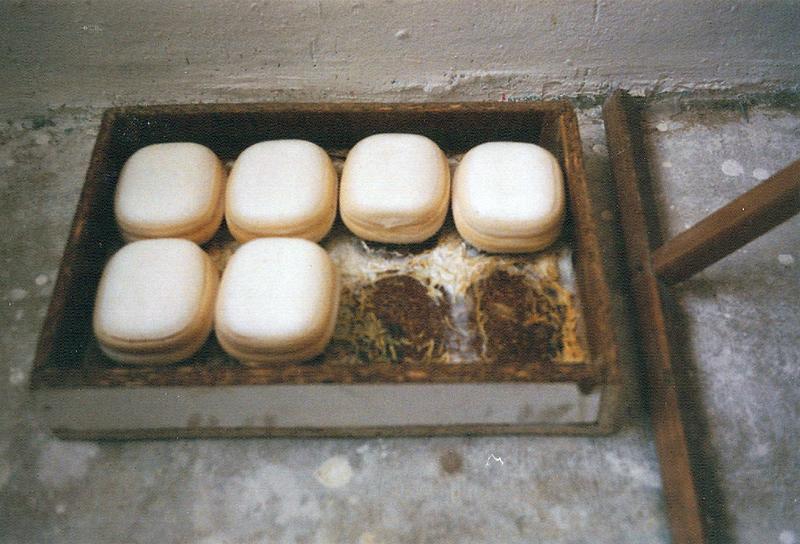 Atelieransicht: gewässerte Seifen, 1994